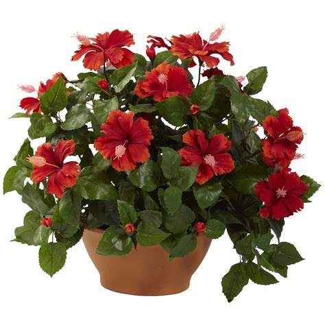 Hibiscus In Planters by Hibiscus Silk Plant With Clay Planter Artificial Plants
