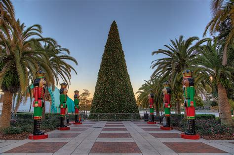 lake eola christmas tree video at disney matthew paulson photography