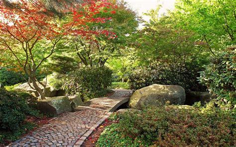 jardineria casi sin agua 8467703040 arte y jardiner 205 a como ubicar y plantar 225 rboles