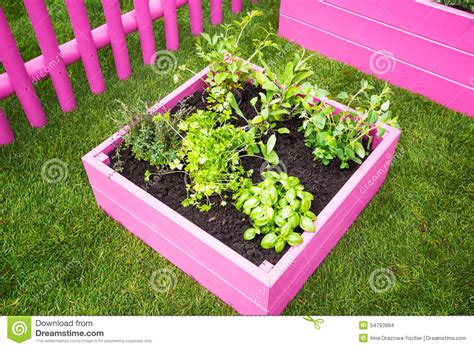 mini herb garden mini herb garden stock photo image 54793984