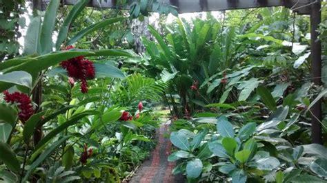 andromeda botanic gardens andromeda botanic gardens bathsheba barbados top tips