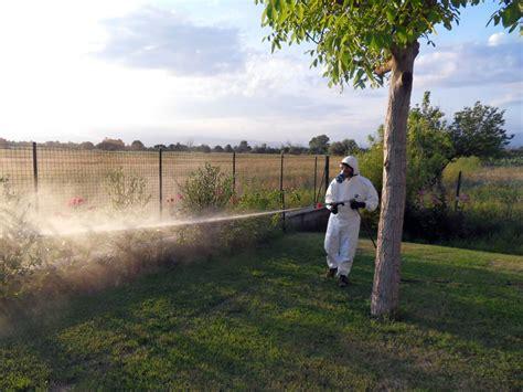 disinfestazione zanzare giardino la disinfestazione zanzare 232 necessaria per la nostra