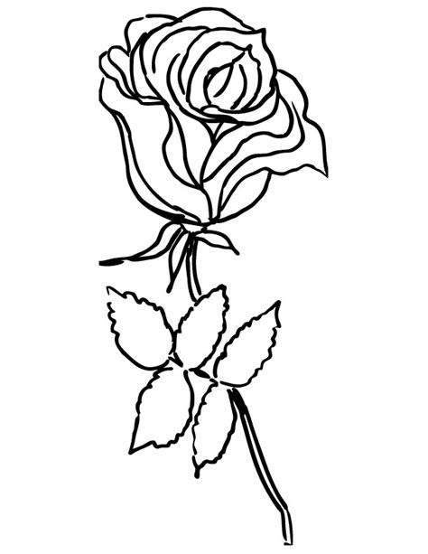 rose coloring page to print rose coloring pages to print az coloring pages