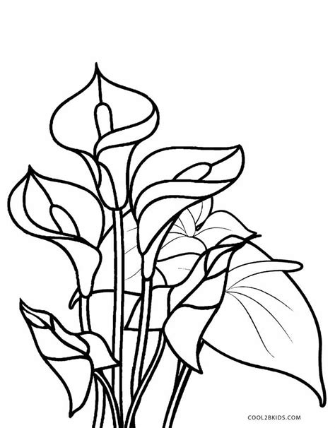 flower coloring sheet free printable flower coloring pages for cool2bkids