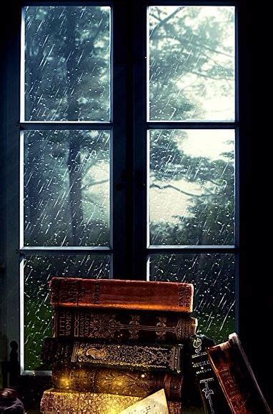 the in the window a novel books evening outside the window rainy days and nights