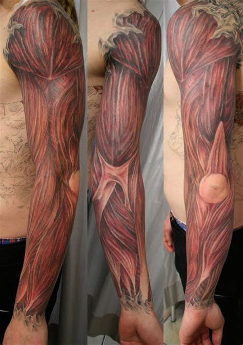 Tattoo Arm Muscle | tattoo art anatomy tattoos