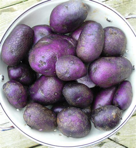 moira sanders roasted purple potatoes