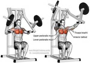 Flat Bench Chest Fly Machine Chest Press Exercise Instructions And Video