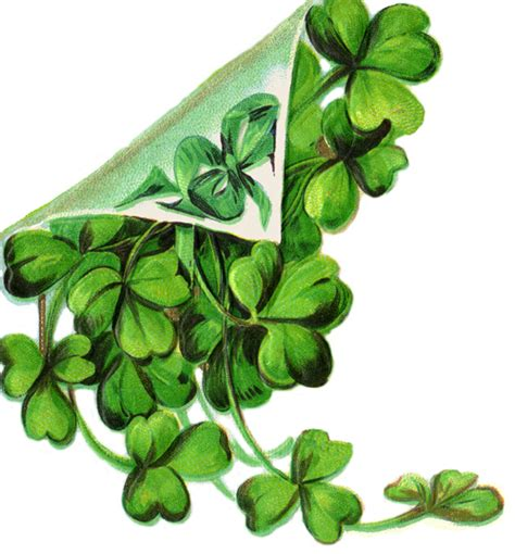 Search Free Ireland Free Shamrock Shamrock Printable Clip Scrap Book St S