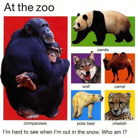 The Books Animal pin animal book on