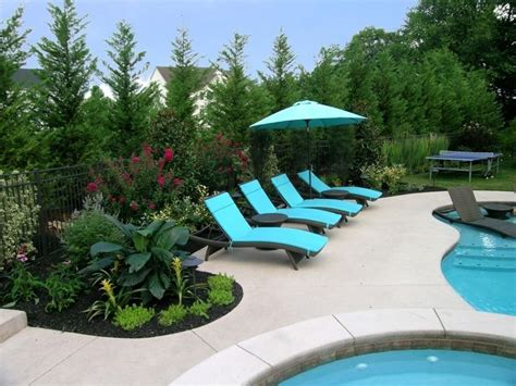 this swimming pool renovation included removing the old plant material and adding crape myrtle