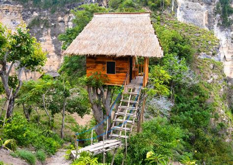 tree house layout at belize treehouses belize tree houses belize tree houses point best house design the village