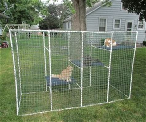 Alas Kandang Sulcata cat enclosure cats pvc pipes and wire mesh