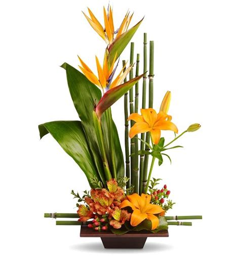 floral arrangements on pinterest tropical flower