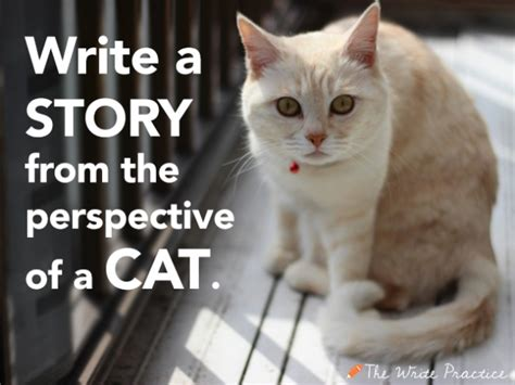 Cat Essay Writer by Writing Prompts About Cats