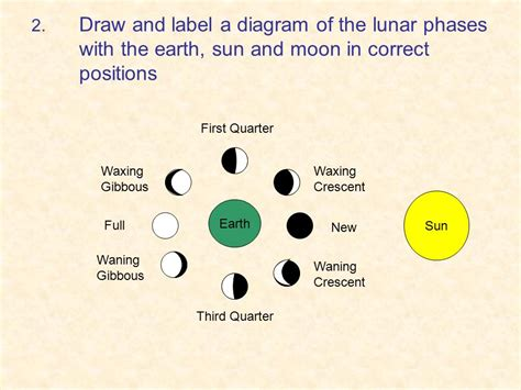 phases of the moon diagram to label sun diagram with labels image collections how to guide