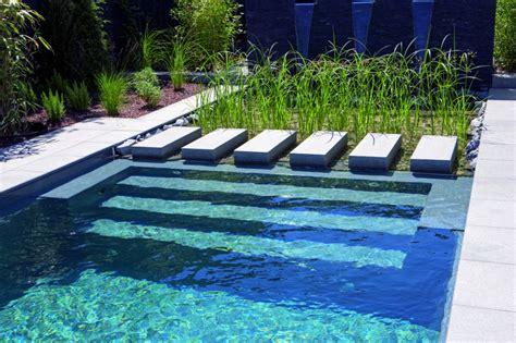 schwimmteich garten naturpool oder schwimmteich mit biologischer natuerlicher