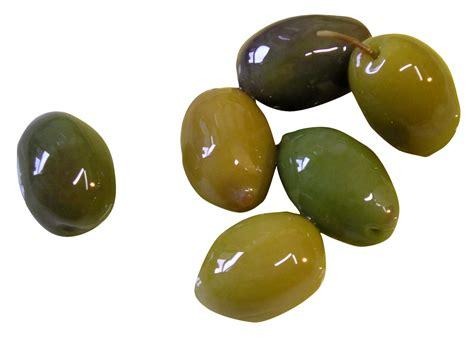 png image olive png