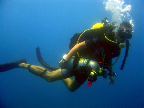 scuba diving scuba diving diver equipment gear pictures photos underwater
