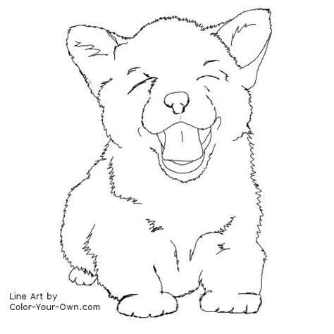corgi puppy coloring page