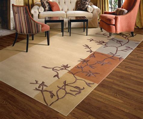 Area Rug Tips Lcc Fr Area Rug Cleaning Tips Louisvile Carpet Cleaning 502 585 2444