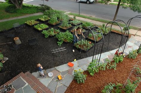 Photos Of Front Yard Vegetable Gardens Front Yard Vegetable Garden Ideas