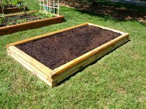 delete the nuts just one more raised bed for now