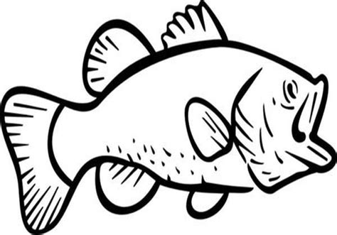 river fish coloring pages bass fish jumping coloring pages outline of grig3 org