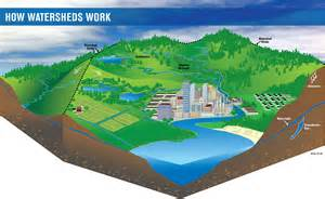 watershed definition what is