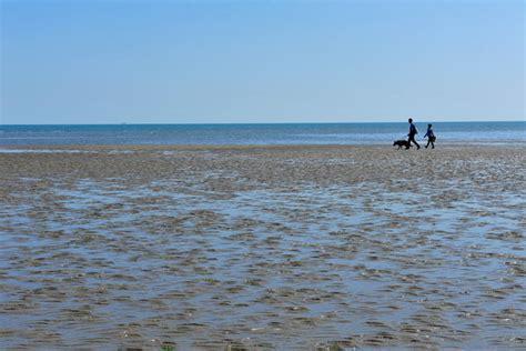 porto caleri rosolina rosolina mare in bicicletta sul delta po laguna di