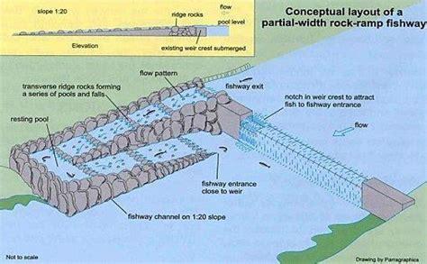 jai chandra layout khagaria video download conceptual layout of a rock r fish way source http