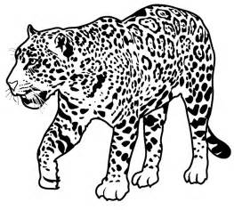 Jaguar Colour Jaguar Coloring Pages Only Coloring Pages