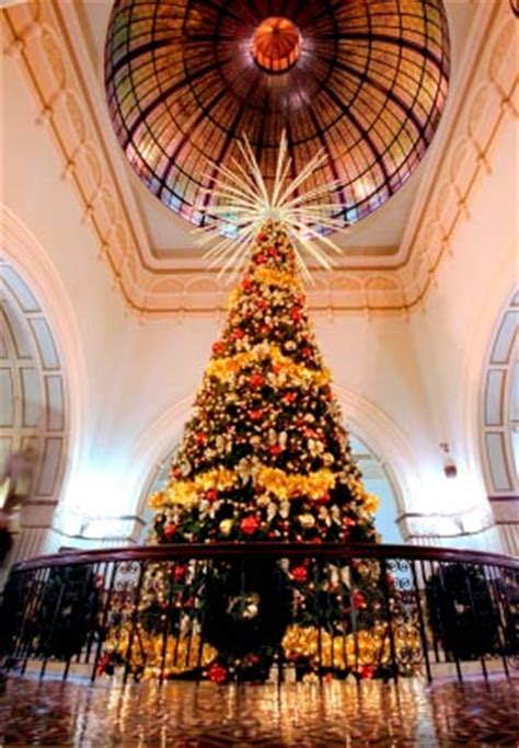 australia s largest indoor christmas tree lights up qvb