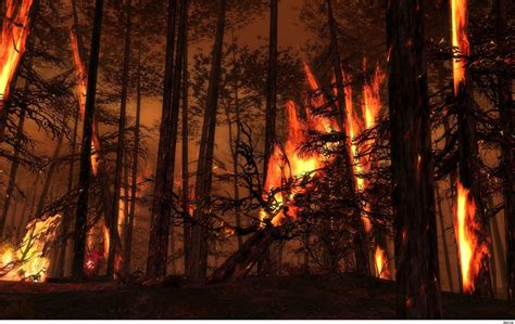wallpaper bencana alam forest fire wallpapers wallpaper cave