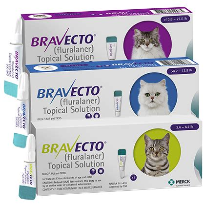 Bravecto Flea Pill For Cats - bravecto for cats topical flea treatment 1800petmeds