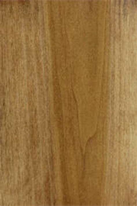 lovely Door Colors For Brown House #5: Pop%20Candlelight.JPG