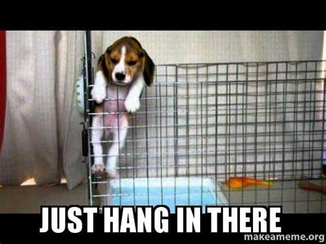 Hang In There Meme - just hang in there make a meme