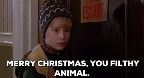 Merry Christmas You Filthy Animal Meme - merry christmas you filthy animal gif find share on giphy