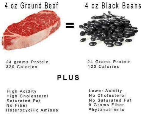 protein 4 oz ground beef 4 oz ground beef 4 oz black beans 24 grams protein 320