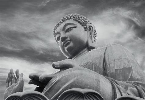 Next Doormat Buddha Black And White Wall Mural Buy At Europosters