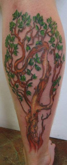 trailing tattoos designs 1000 images about arbutus on tree
