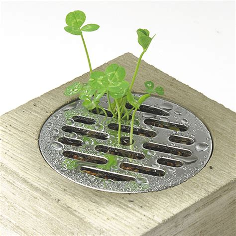 Drainpipe Planters by Haisui Water Drain Cover Planter The Green
