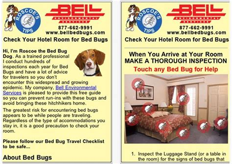 bed bug store bed bug store 28 images bed bug store 28 images bed