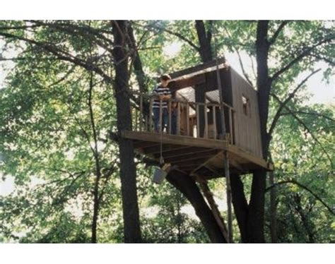 house to build how to build a simple treehouse step by step