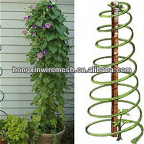 wire supports for climbing plants climbing plant support wire view vegetable support spiral