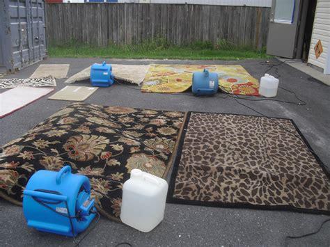 blatchfords rug cleaning rug rugs ideas
