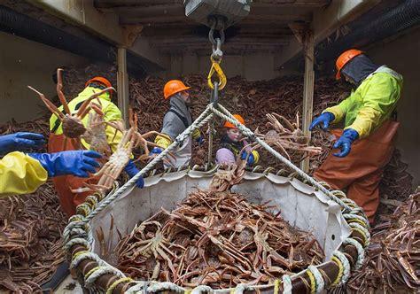 acidification threatens alaskan crab fishery wilderutopia
