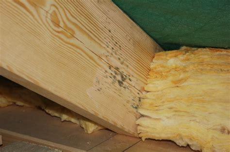 Was Sind Dachsparren by Schimmel An Den Dachsparren Wir Bauen Dann Mal Ein Haus