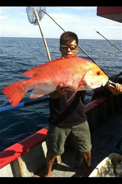 fishing boat charter singapore boat fishing charter to singapore and malaysia picture