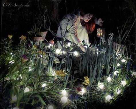 moon garden flowers create a magical moon garden with fragrant flowers